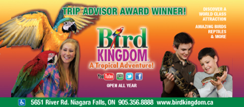 Coupons bird kingdom niagara falls