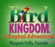 niagara falls attraction tickets coupons passes buy