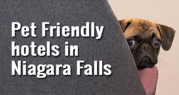 Pet Friendly Hotels Niagara Falls Ontario Canada